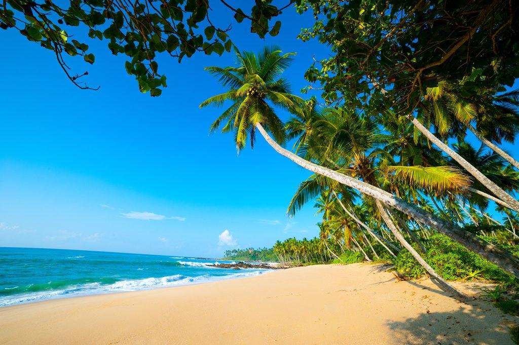 Шри Ланка пляж