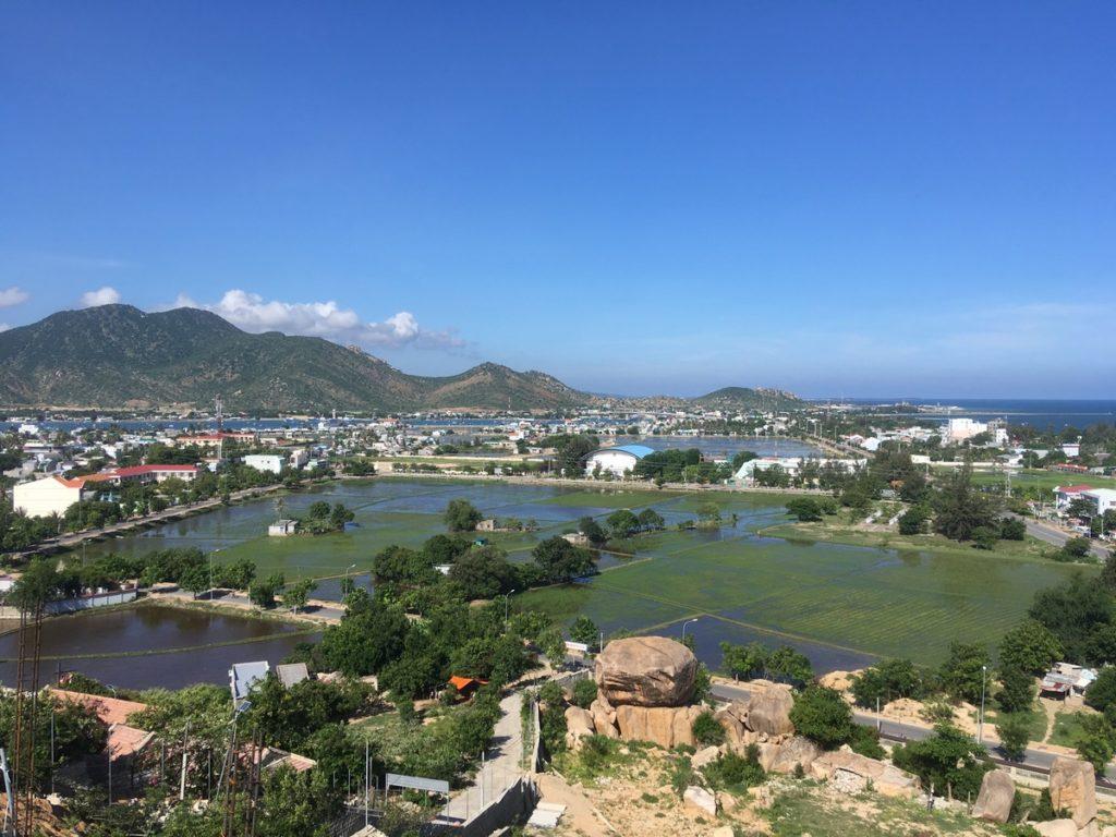 Вьетнам - рисовые поля